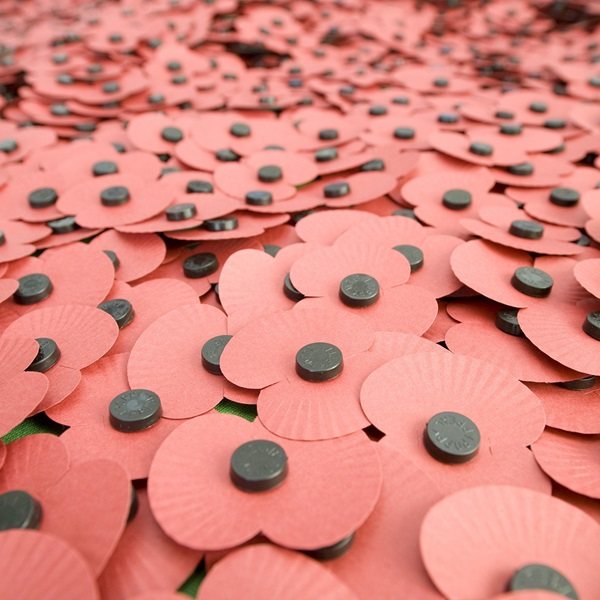 Paper poppies